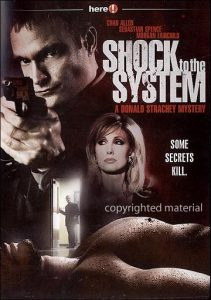 Donald Strachey Mystery 2 – Shock to the System