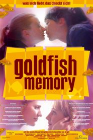 Goldfish Memory (Todas as Cores do Amor)