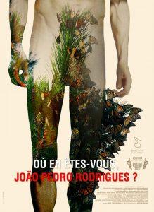 Onde está agora, João Pedro Rodrigues?