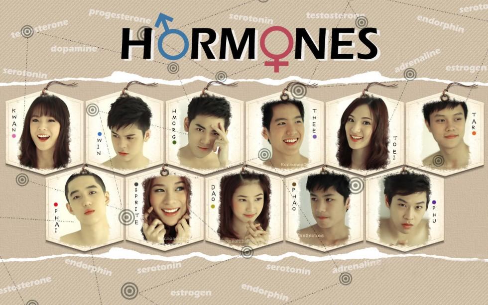 Hormones: 1×1