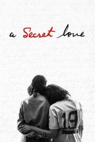 Secreto e Proibido (A Secret Love)