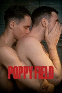 Poppy Field (Câmp de Maci)
